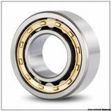 High quality printing machine bearings NJ2317ECP Size 85X180X60