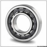 NJ2317 Cylindrical Roller Bearing 85x180x60 mm NJ 2317EM