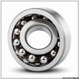 21317 Bearing 85x180x41 mm Self aligning roller bearing 21317 EK *