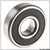 Cylindrical Roller Bearing NF 317 ML317 U1317L 85x180x41 mm
